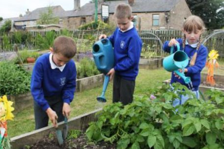 Our children watering our vegetable garden